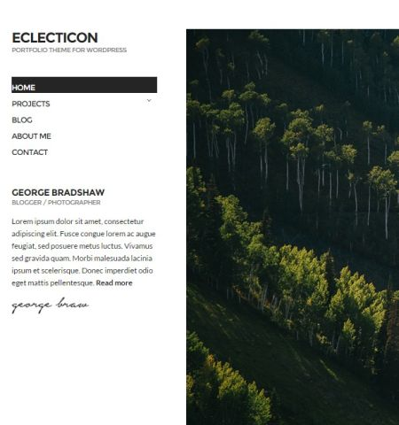 eclection-WP-theme