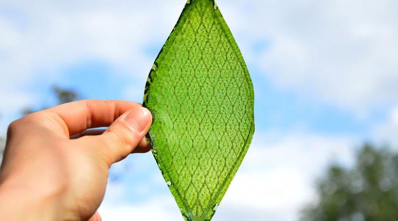 frunza-sintetic-de-matase-ce-produce-oxigen